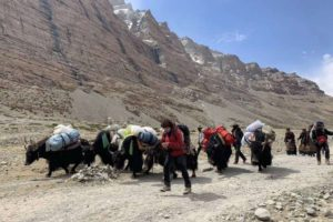 Guide on Trekking in Tibet