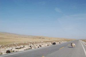 Qinghai tibet highways landscape