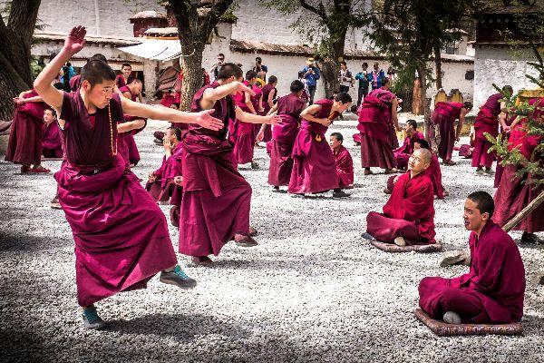 Sera Monastery Monk Practises